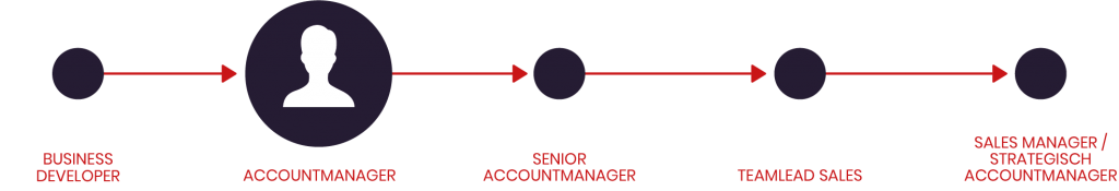 Accountmanager IT Naarden