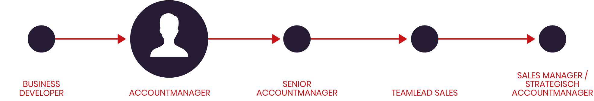 Accountmanager IT